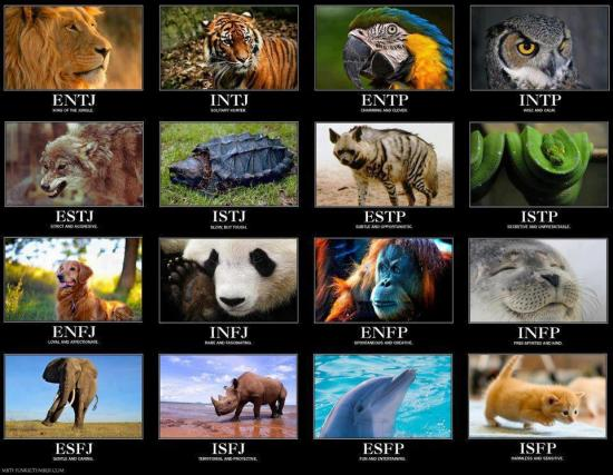 A fun way to describe Myers–Briggs types: click to enlarge